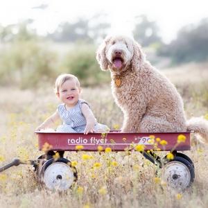 San-Diego-Baby-photographer-10